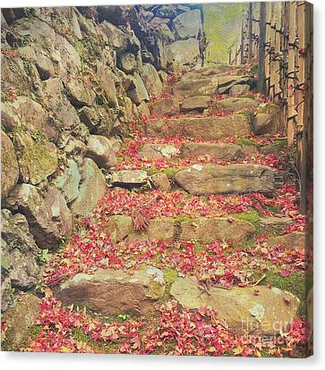Wabi-sabi Rubble Masonry Bamboo Fence Fallen Leaves Canvas Print by Beverly Claire Kaiya