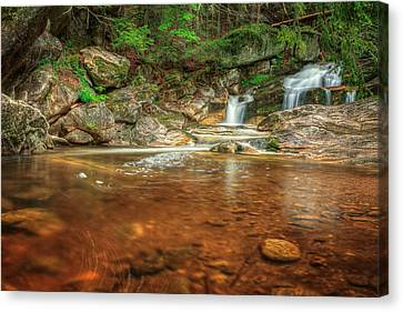 Wading Pool Canvas Print by Bill Wakeley