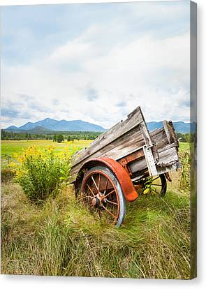 Wagon And Wildflowers - Vertical Composition Canvas Print by Gary Heller