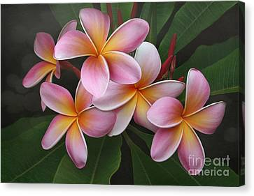 Wailua Sweet Love Texture Canvas Print by Sharon Mau