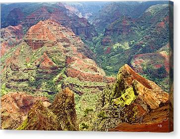 Waimea Canyon Canvas Print by Scott Pellegrin