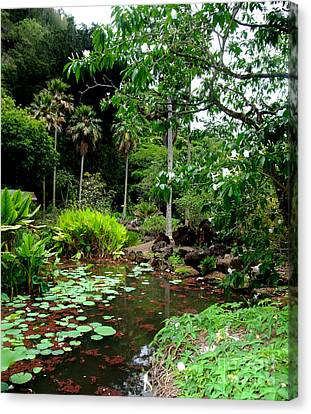 Waimea Valley In The North Shore Of Oahu Hawaii Canvas Print by Jim Fitzpatrick