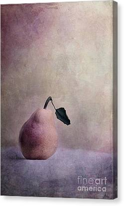 Waiting For Company Canvas Print by Priska Wettstein
