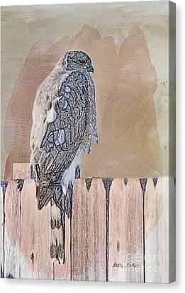 Waiting For Mr. Goodbird Canvas Print by Betty LaRue