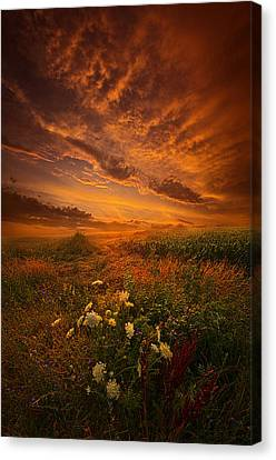Waiting For The Day To Begin Canvas Print by Phil Koch
