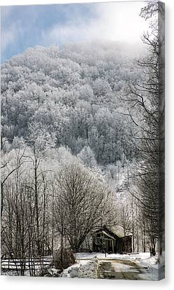 Waiting Out Winter Canvas Print by John Haldane