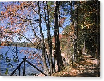 Walden Pond Canvas Print by Eunice Harris