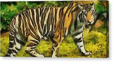 Walk The Tiger Canvas Print by Georgi Dimitrov
