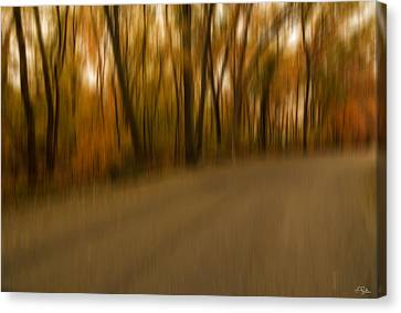 Walk To Change Canvas Print by Lourry Legarde