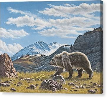 Walking The Ridge - Grizzly Canvas Print by Paul Krapf
