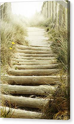 Walkway To Beach Canvas Print by Les Cunliffe