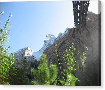 Walt Disney World Resort - Animal Kingdom - 12128 Canvas Print by DC Photographer
