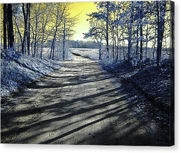 Wandering Alice Is Wondering Canvas Print by Luke Moore