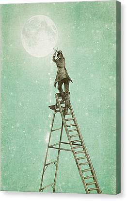 Waning Moon Canvas Print by Eric Fan