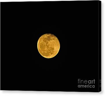Waning Passover Moon Canvas Print by Al Powell Photography USA