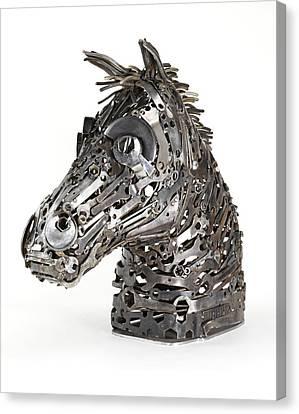 Warhorse Canvas Print by Lawrie Simonson