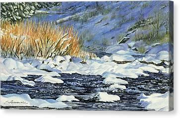 Warm Sun On The Winter Willows Canvas Print by Sharon Lazarowicz