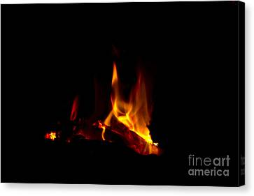 Warmth Canvas Print by Timothy J Berndt
