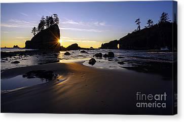 Washington Coast Evening Sunstar Tide Canvas Print by Mike Reid