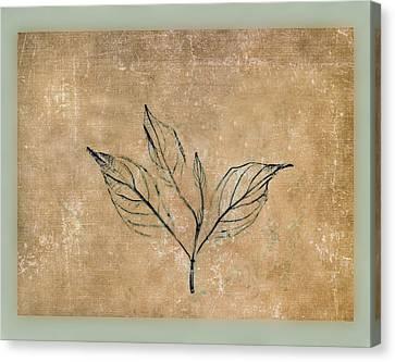 Watch A Leaf Canvas Print by Bob RL Evans