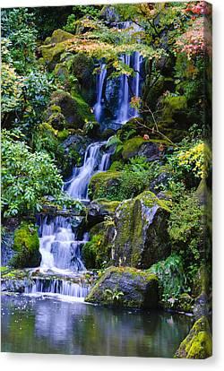 Water Fall Canvas Print by Dennis Reagan