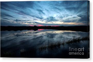 Water Field Harney County Oregon Canvas Print by Michele AnneLouise Cohen