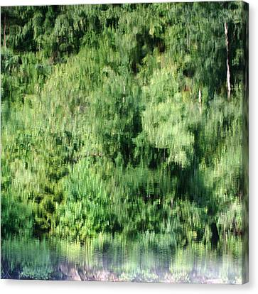 Water Forest Canvas Print by Stanislav Killer