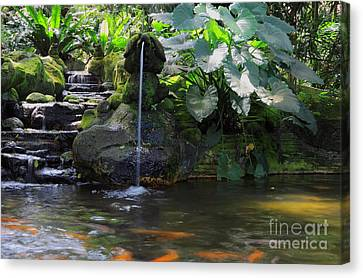 Water Garden Canvas Print by Charline Xia