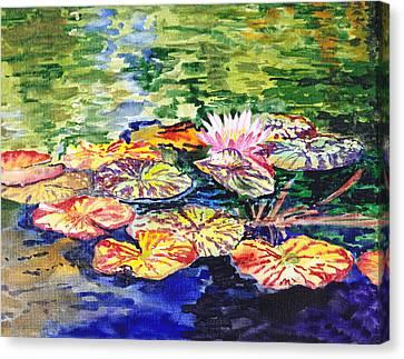 Water Lilies Canvas Print by Irina Sztukowski