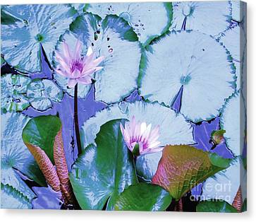 Water Lily II Canvas Print by Ann Johndro-Collins