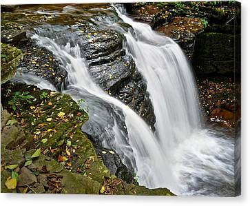 Water Rushes Forth Canvas Print by Frozen in Time Fine Art Photography