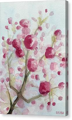 Watercolor Painting Of Pink Cherry Blossoms Canvas Print by Beverly Brown Prints