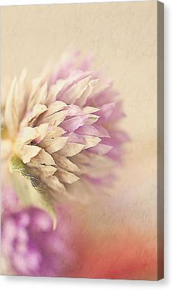 Watercolor Whisper Canvas Print by Faith Simbeck