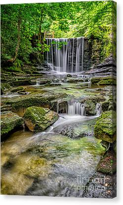 Waterfall Canvas Print by Adrian Evans
