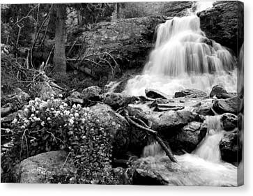 Waterfall Black And White Canvas Print by Aaron Spong