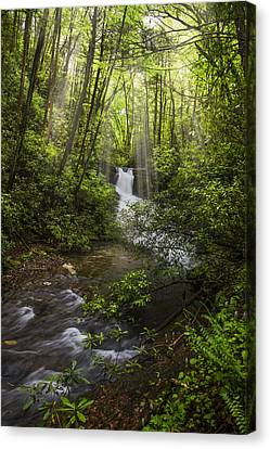 Waterfall In The Forest Canvas Print by Debra and Dave Vanderlaan