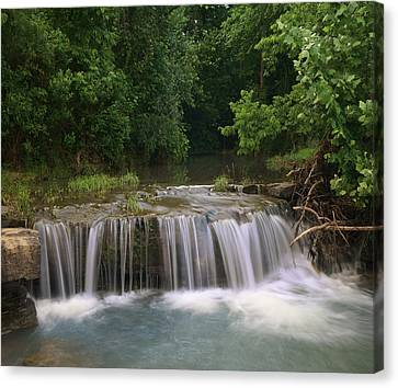 Waterfall Lee Creek Ozarks Arkansas Canvas Print by Tim Fitzharris