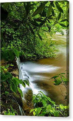 Waterfall Williams River Canvas Print by Thomas R Fletcher