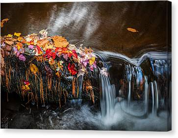 Waterfalls Childs National Park Painted    Canvas Print by Rich Franco