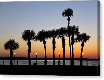Waterfront After Dark Canvas Print by Debra and Dave Vanderlaan