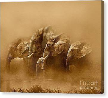 Watering Hole Canvas Print by Robert Foster