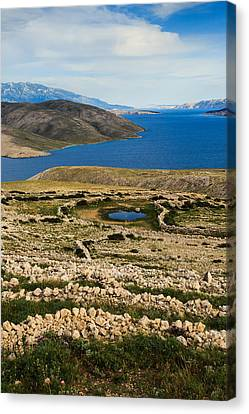 Watering Place Canvas Print by Davorin Mance