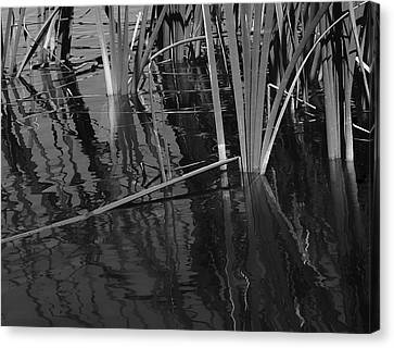 Waters Edge  Canvas Print by Steven Milner