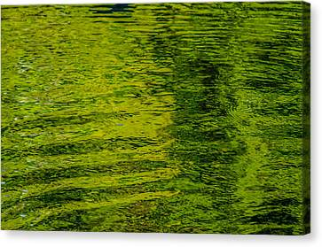Water's Green Canvas Print by Roxy Hurtubise