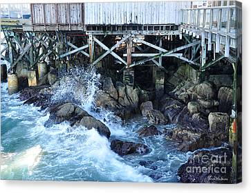 Wave Action Canvas Print by Susan Wiedmann