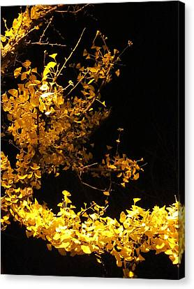 Wave Of Yellow Canvas Print by Guy Ricketts