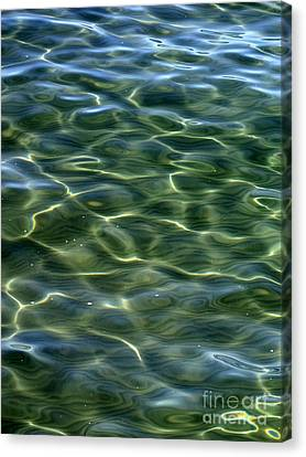 Waves On Lake Tahoe Canvas Print by Carol Groenen