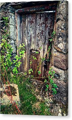 Weathered Door Canvas Print by Adrian Evans