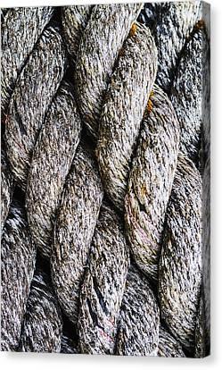 Weathered Rope Closeup Canvas Print by Vishwanath Bhat