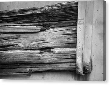 Weathered Wood Canvas Print by Toni Hopper